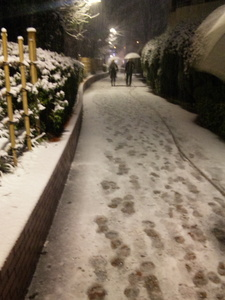 2/14 雪